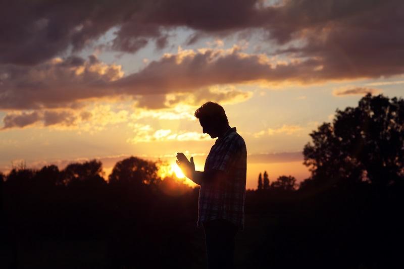 Recunostinta ne lumineaza mereu drumul in viata.